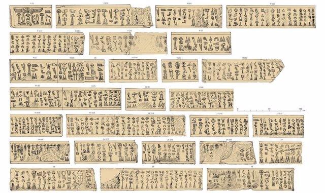 Texto jeroglífico del estudio