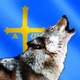 Lobo Asturias