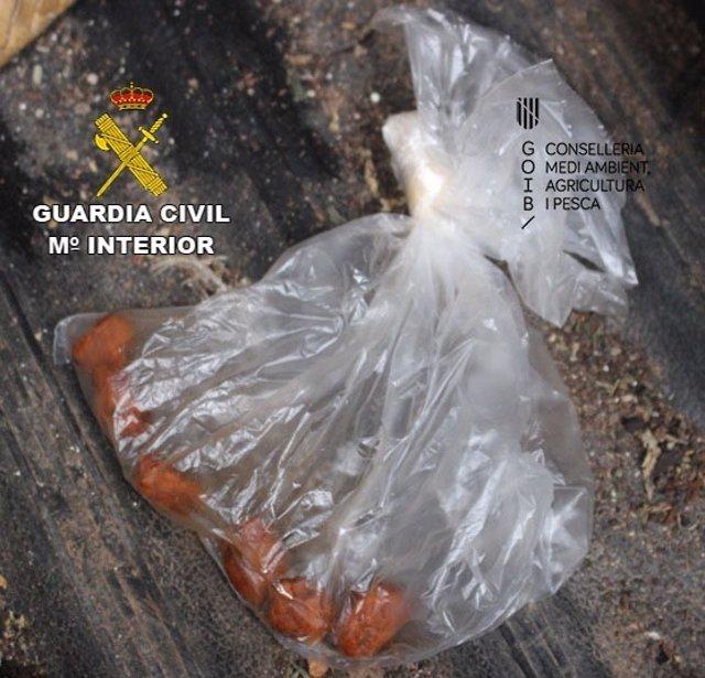 Cebo envenenado para matar aves rapaces