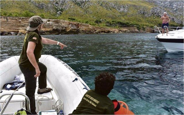 Embarcación informa sobre la posidonia