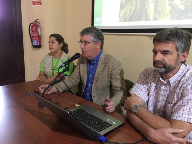 Nota, Fotos Y Audio Junta (Taller Mayores Y Medio Ambiente Aracena)