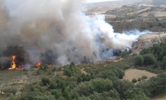 Incendio en el monte