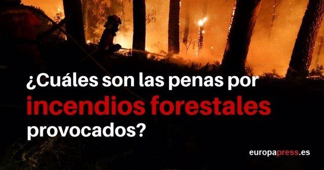 ¿Cuáles Son Las Penas Por Incendios Forestales Provocados?