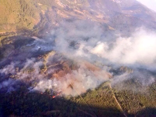 Incendio forestal en Ibias