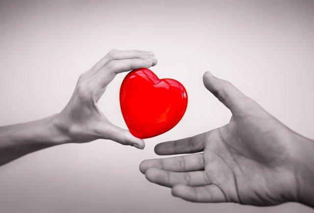 Donante, corazón, órganos