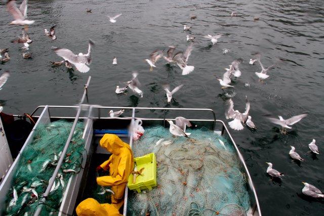 Pescadores bajo la lluvia'