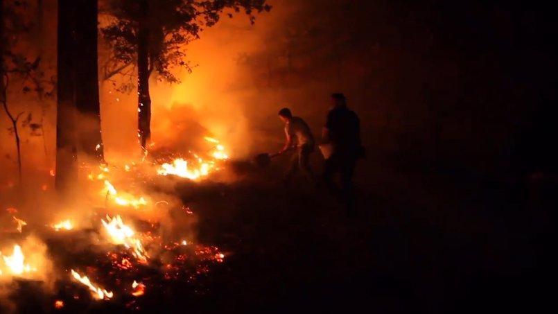 Vídeo: Gobierno ayudará a quienes perdieron su casa por los incendios