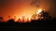 Segueix sense control un incendi en A Gudiña (Ourense) d'entre els 42 focs que es registren a Galícia (REMITIDA)