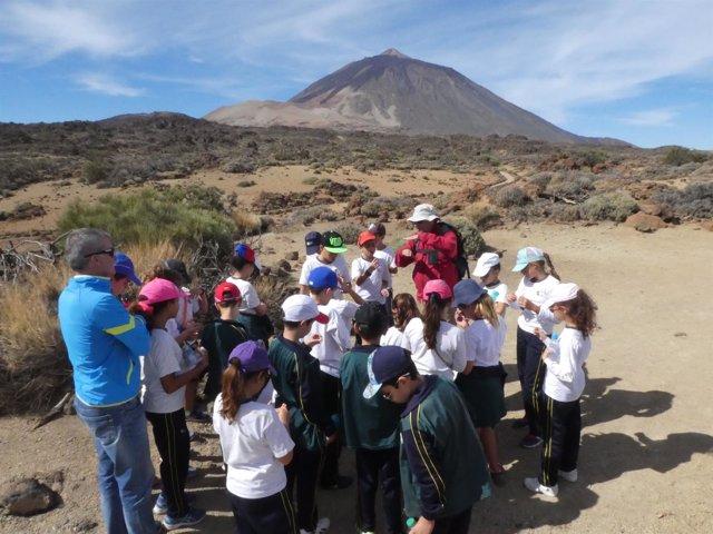 Proyecto formativo en el Parque Nacional del Teide