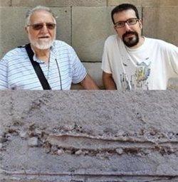Troben fòssils de fa 12 milions d'anys en edificis modernistes de Barcelona (UB)