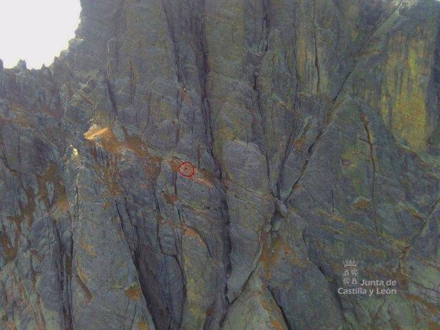 Rescate en el pico Curavacas, en Triollo (Palencia)