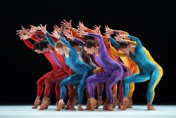 La companyia de dansa Introdans homenatja el coreògraf holandès Van Manen a Terrassa (CENTRO CULTURAL TERRASSA)