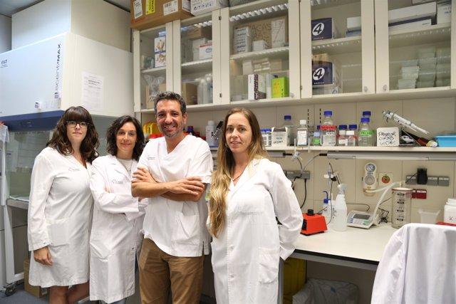 Grupo de investigación en Imagen Médica Molecular del VHIR