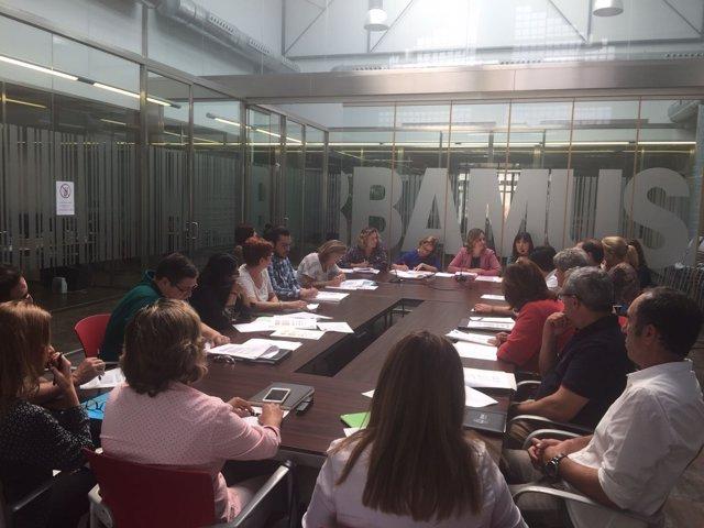 Reunión de la Comisión de Violencia de Género