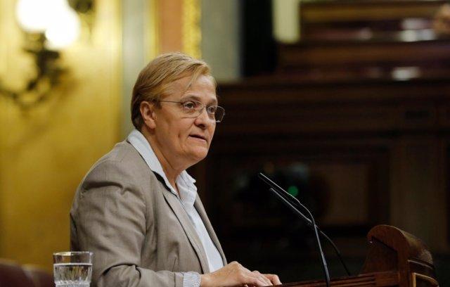 La diputada del PSOE Ángeles Álvarez en el Congreso