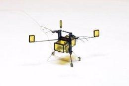 RoboBee dron