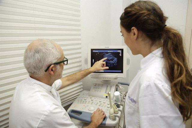 Ecógrafo, fecundidad, in vitro
