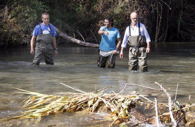Proyecto Nutria en el Parque Natural del Turia