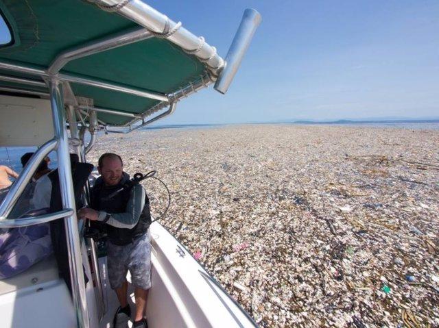 Mar plástico