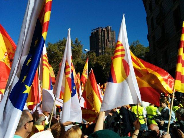 Manifestación de SCC