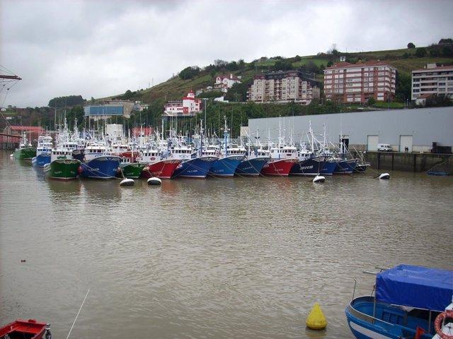Puerto de Bermeo