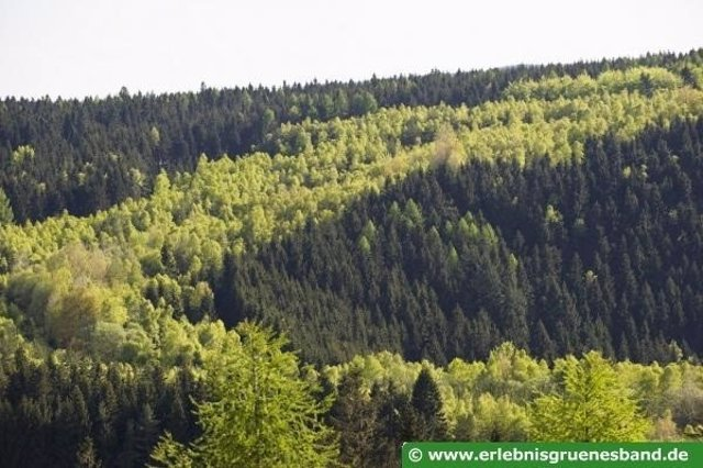 Paisaje en Alemania del proyecto Green Belt.