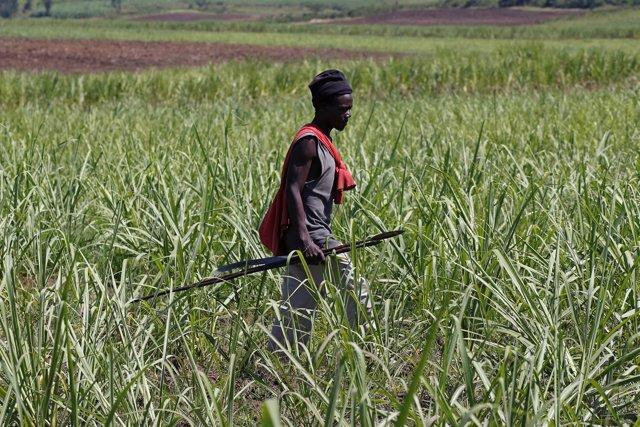 Un luo keniano armado con una lanza