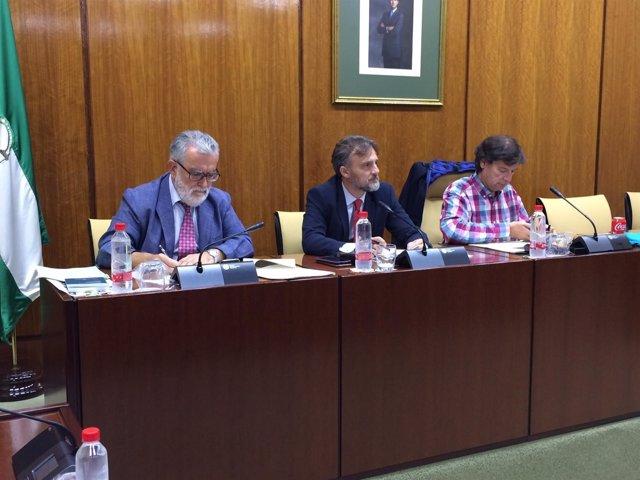 José Fiscal preside la Comisión parlamentaria de Medio Ambiente