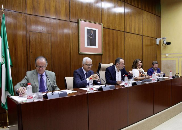 Jiménez Barrios durante la comisión parlamentaria de Presidencia