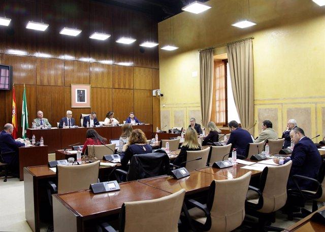 Comisión de Presidencia,  Administración Local y Memoria Democrática