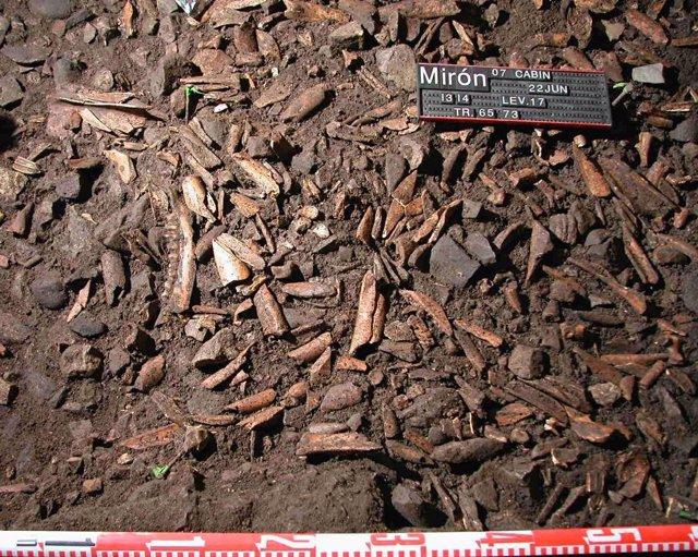 Huesos en la cueva del Mirón (Ramales de la Victoria, Cantabria)