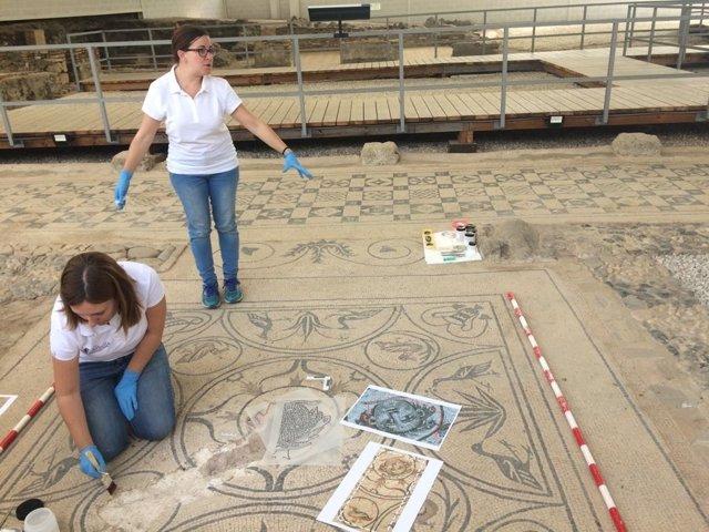 Restauración de mosaico expoliado de la medusa de la villa romana de marbella