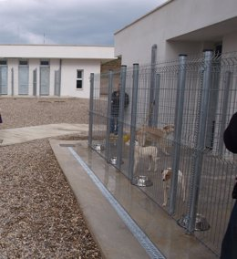 Perros en el Centro de Acogida de Animales del Ayuntamiento de Logroño