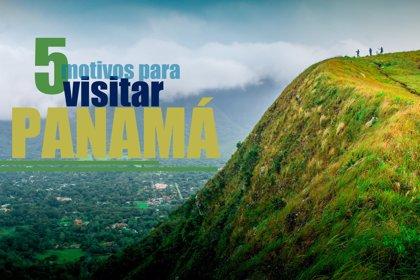 Cinco motivos por los que todo amante de la naturaleza debería visitar Panamá