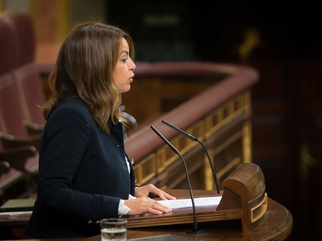 La diputada del PSOE Tamara Raya, en el Pleno del Congreso