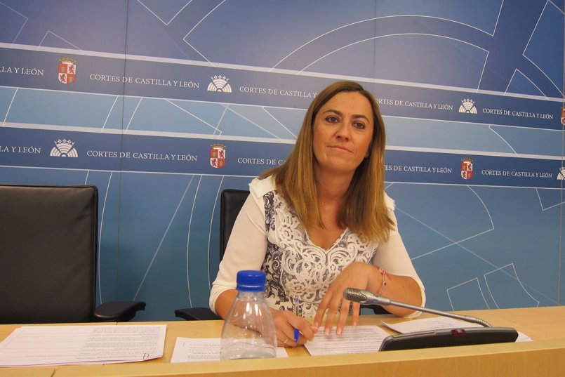 """El PSOECyL sigue ganando """"peso"""" en la estructura federal con la incorporación de Barcones y Sánchez"""