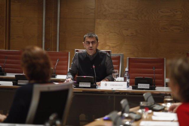 Monedero en la Comisión de Investigación sobre la financiación de partidos
