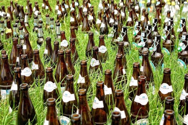 Fabrican un nuevo material aislante para techos verdes con desechos de cerveza