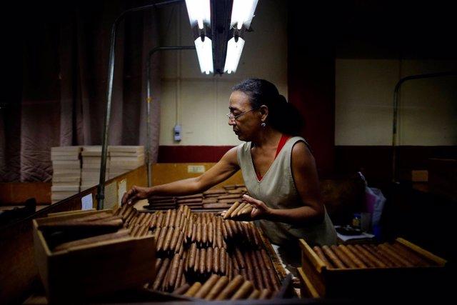 Mercedes Castro, trabajadora de H. Upmann Tobacco