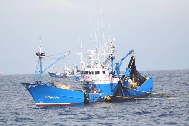 Resultado de imagen para pesca de sardina imagenes