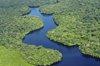 El 46% de los ecosistemas colombianos están en peligro
