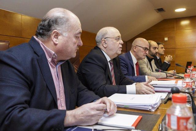 Sota en la Comisión de Hacienda del Parlamento