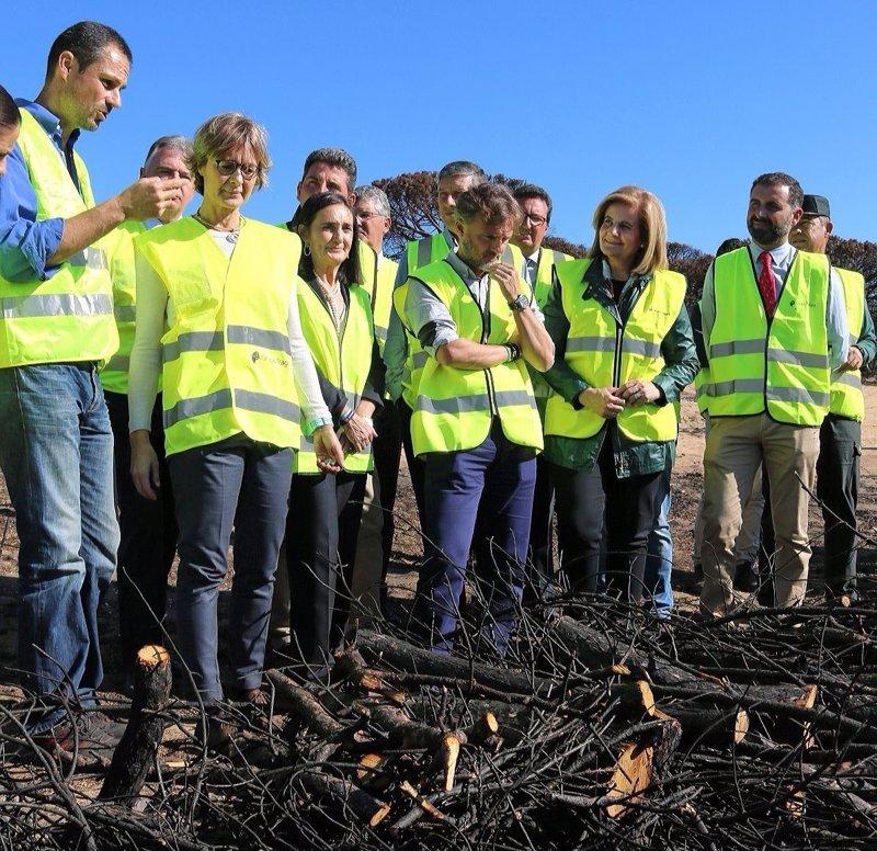 El Gobierno destinará un millón a reforestar la zona del incendio de Doñana