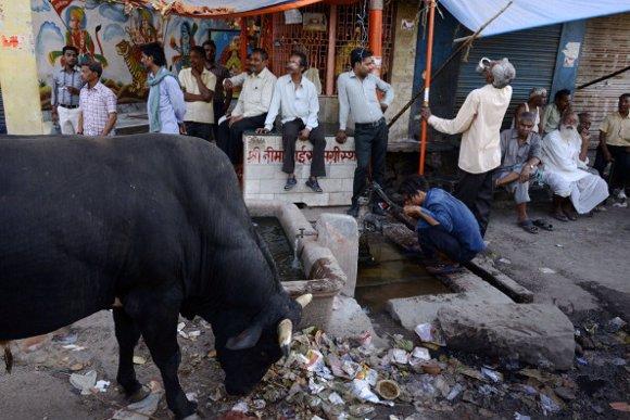 toro india