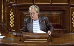 Ángeles Álvarez diputada del PSOE