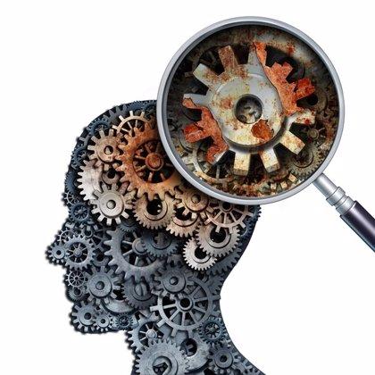 ¿Qué diferencia el cerebro humano del de otras especies? No sólo es el tamaño