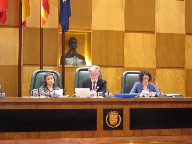 Pleno del Ayuntamiento de Zaragoza este viernes.