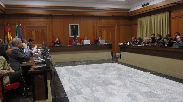 Pleno del Ayuntamiento de Córdoba