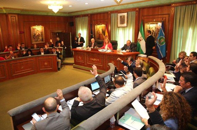 Pleno de Marbella noviembre de 2017