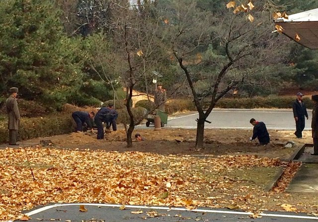 Soldados norcoreanos cavan una fosa y plantan árboles en la frontera con el Sur.